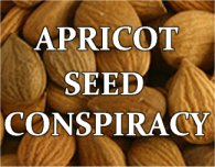 Apricot Seeds, Vitamin B17 and Laetrile - The REAL Conspiracy